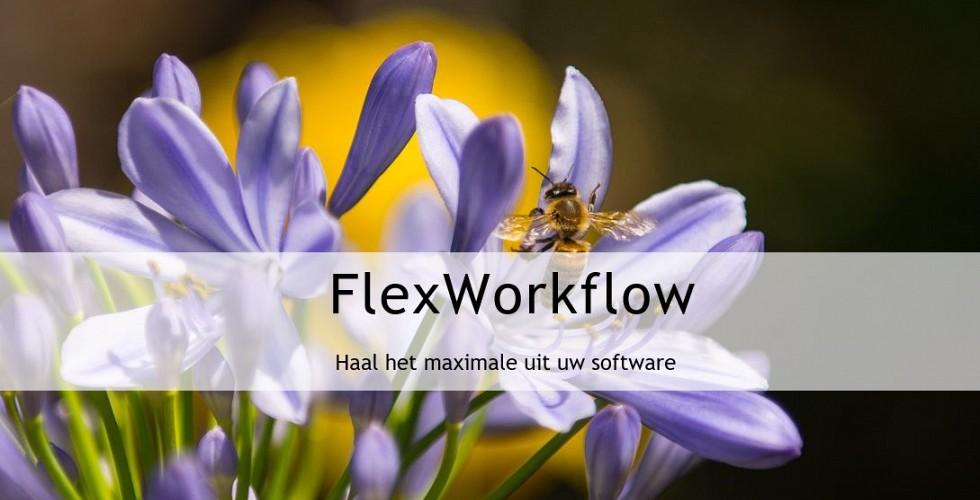 FlexWorkflow